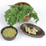 Moringa Oleifera and Diabetes
